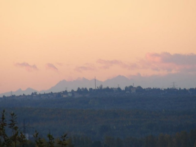 morning_tatry_hermit_sosnowiec